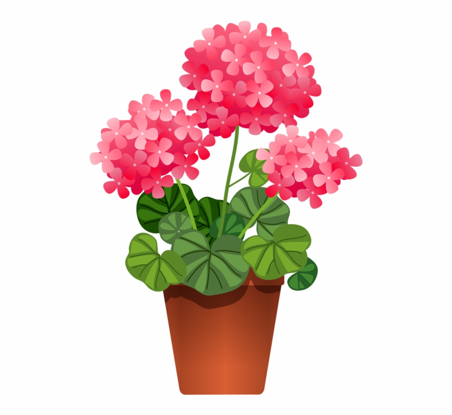 Plants flowers clipart vector download Potted Flowers Flower Clipart, Potted Flowers, Flowers - Flowering ... vector download