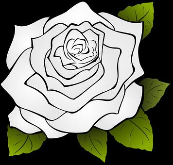 Cliparts rose blanche svg transparent library Rosa, Fleur, Blanc, Rose Blanche   fleurs   Dessin, Tatouage et Fleurs svg transparent library