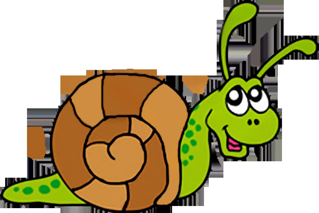Snail clipart images