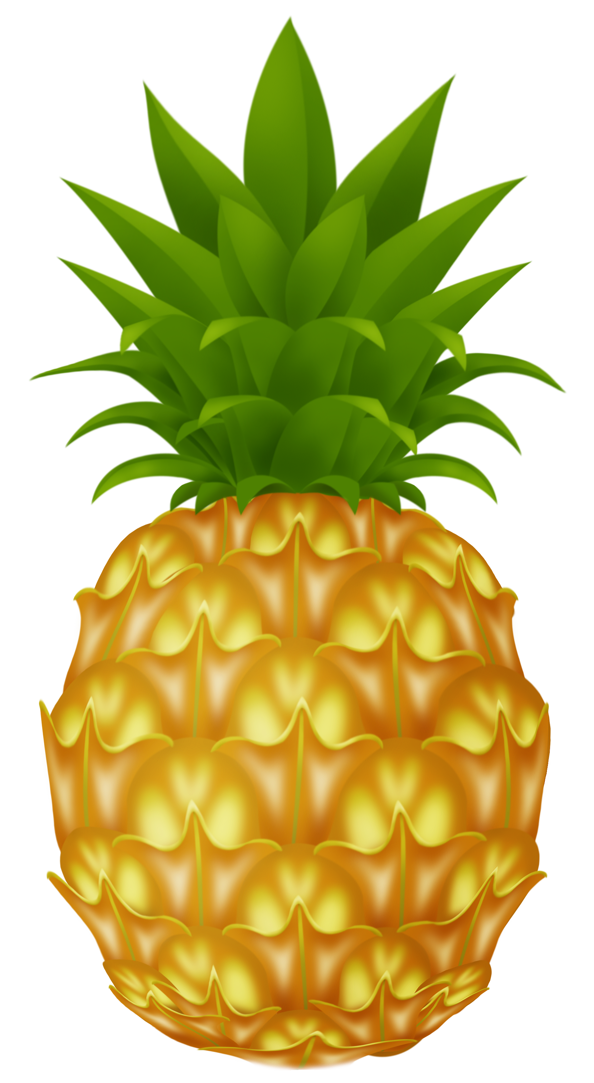 Pine apple clipart svg transparent stock Pineapple PNG Picture | gif plody | Pinterest svg transparent stock