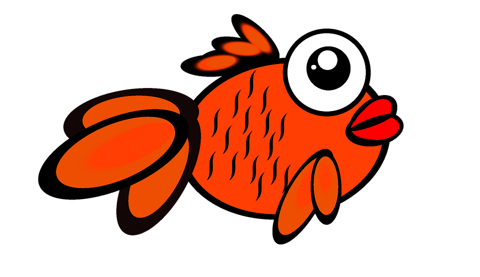 Clown fish clipart black and white image library download clipart of gold color fish - Clipground image library download