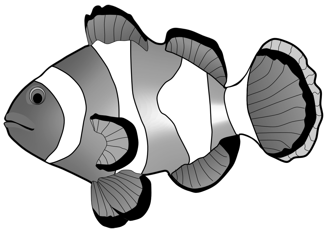 Clownfish clipart black and white graphic transparent stock Clown Fish Clipart Black And White | Free download best Clown Fish ... graphic transparent stock