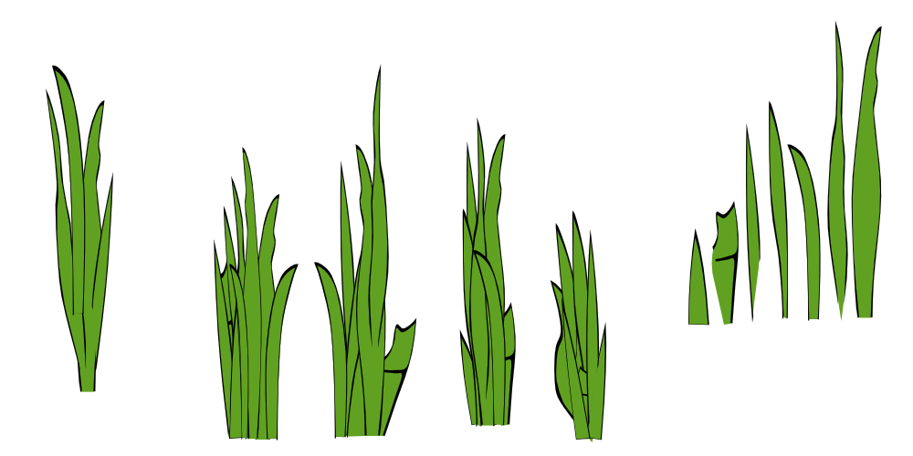 Clump clipart clip art royalty free Lawn Clip art - clump of grass png download - 1000*500 - Free ... clip art royalty free