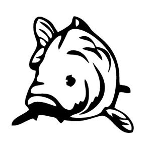 Coarse fishing clipart picture free Carp Drawing | Free download best Carp Drawing on ClipArtMag.com picture free