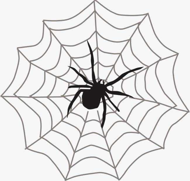 Spider silk clipart clipart free stock Spider Web Spider PNG, Clipart, Animal, Cobweb, Crawl, Spider ... clipart free stock