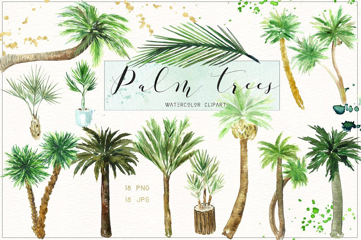 Coco palms clipart banner download Palm tree. Watercolor clipart. palm tree palm palm beach watercolor ... banner download