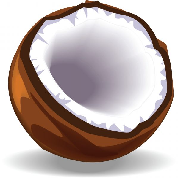 Coconut cliparts image freeuse Free Coconut Cliparts, Download Free Clip Art, Free Clip Art on ... image freeuse
