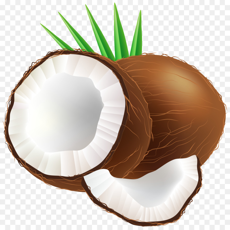Coconut cliparts image free library Water Cartoon clipart - Coconut, Product, transparent clip art image free library