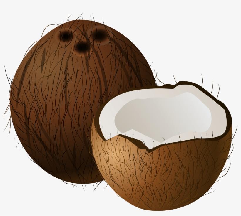 Coconut clipart image clip transparent download Coconuts Png Clip Art - Coconut Clipart Transparent PNG - 2000x1691 ... clip transparent download