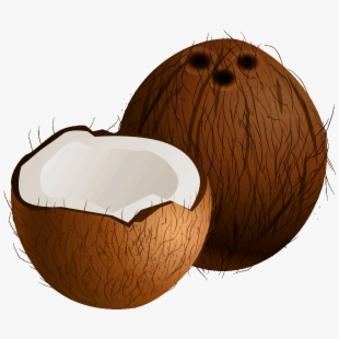 Coconut cliparts clipart transparent library Free Coconut Clipart Cliparts, Silhouettes, Cartoons Free Download ... clipart transparent library