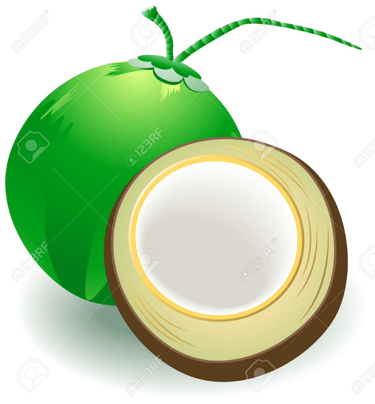 Coconut cliparts graphic royalty free download Coconut Clipart | Free download best Coconut Clipart on ClipArtMag.com graphic royalty free download
