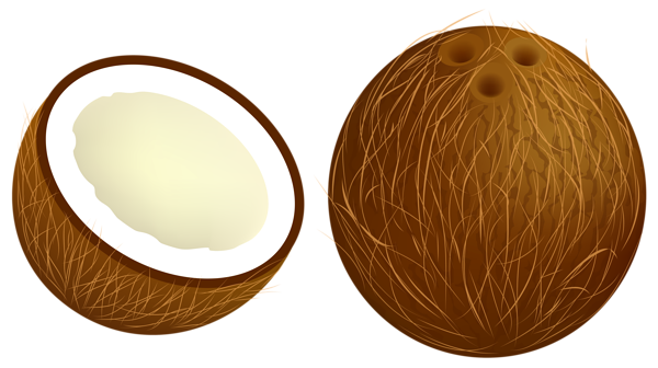 Coconut cliparts clip royalty free download Free Coconut Cliparts, Download Free Clip Art, Free Clip Art on ... clip royalty free download