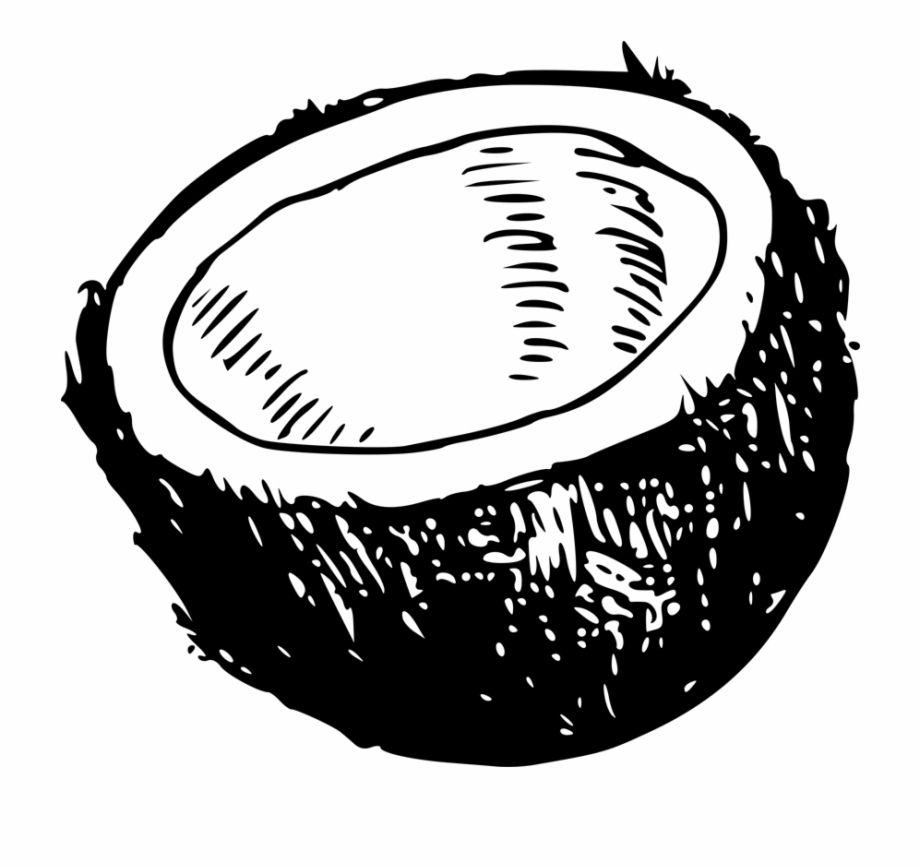 Coconut shell clipart png black and white library Coconut Clipart Coconut Husk - Coconut Shell Black And White ... png black and white library