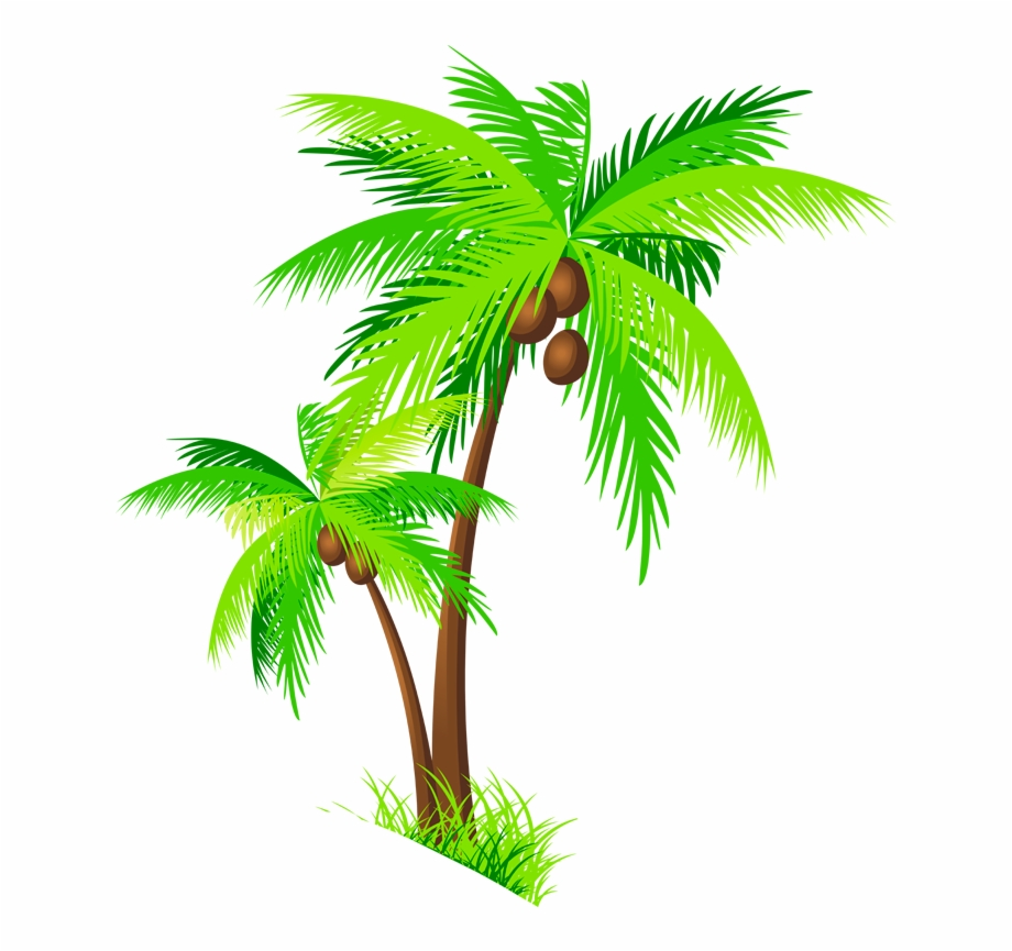 Coconut trees clipart
