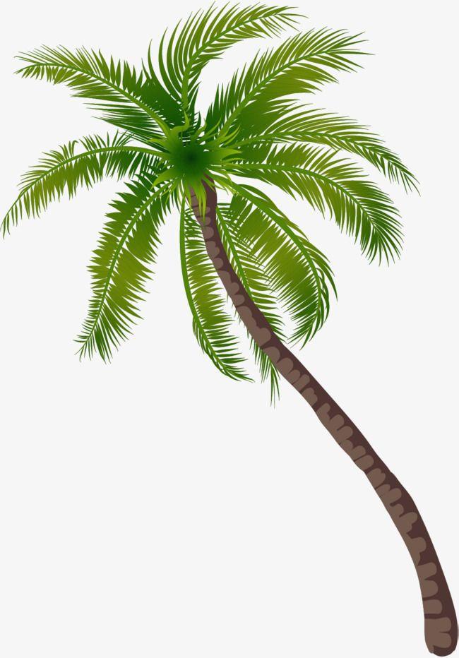 Coconut tree clipart plan svg transparent Coconut Tree Pattern, Coconut Clipart, Tree Clipart, Green Trees PNG ... svg transparent
