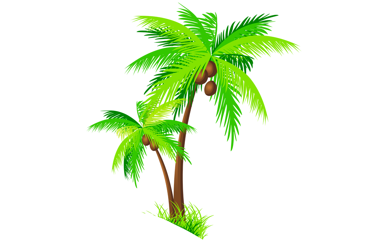 Palm tree with coconuts clipart graphic freeuse 28+ Collection of Kerala Coconut Tree Clipart | High quality, free ... graphic freeuse