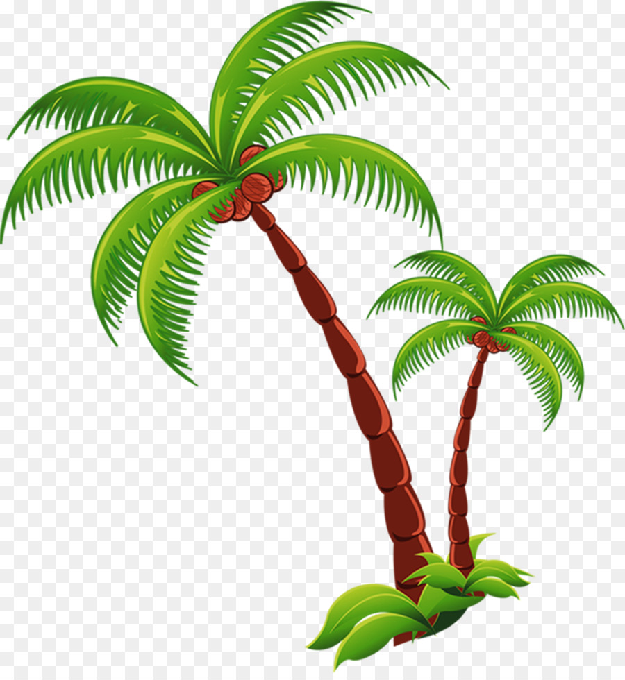 Coconut trees clipart clipart black and white Coconut Tree Cartoon clipart - Coconut, Tree, Plant ... clipart black and white