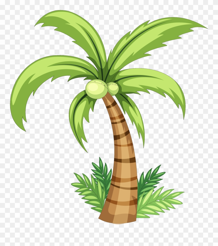 Coconut trees clipart clip art black and white stock Coconut Drawing Clip Art - Simple Coconut Tree Drawing - Png ... clip art black and white stock
