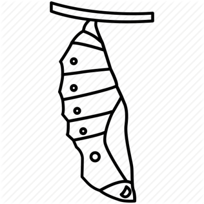 Cocoon to butterfly clipart black and white jpg stock Cocoon PNG - DLPNG.com jpg stock