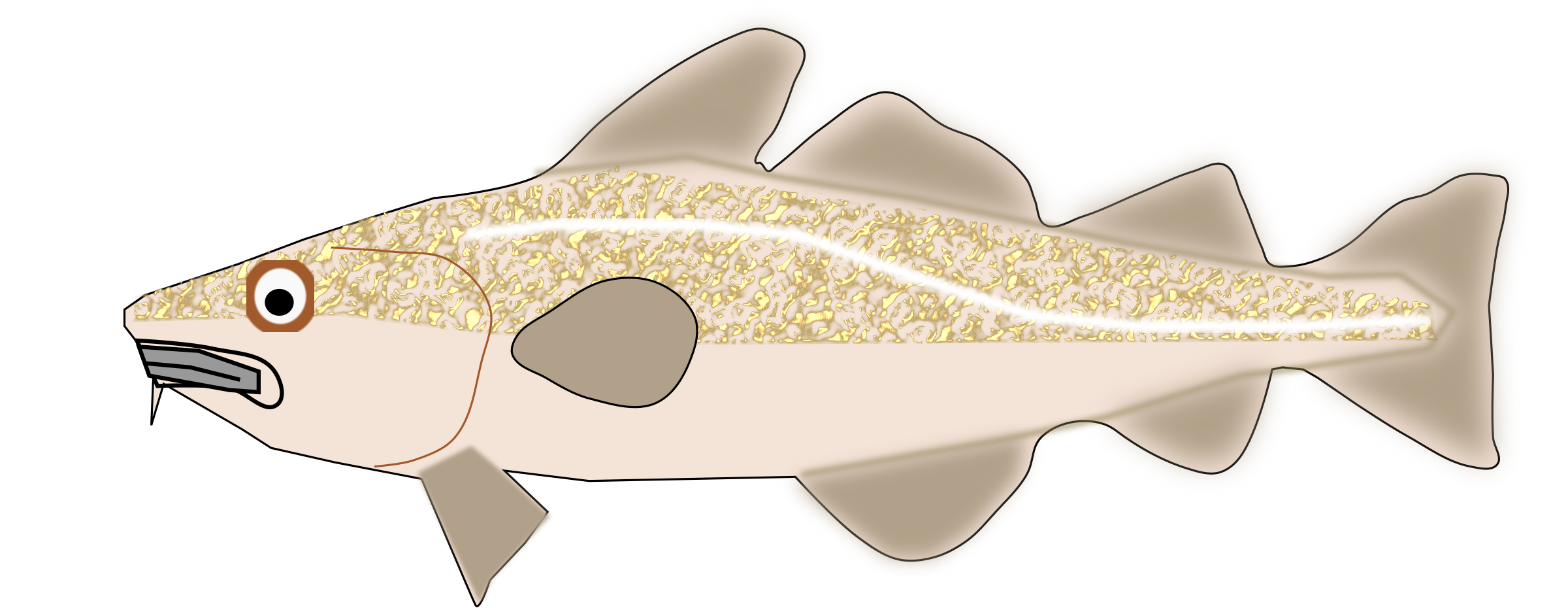 Cod fish clipart graphic royalty free Clipart - Codfish graphic royalty free