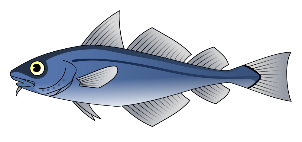 Cod fish clipart vector freeuse clipartist.net » Clip Art » Codfish Svg vector freeuse