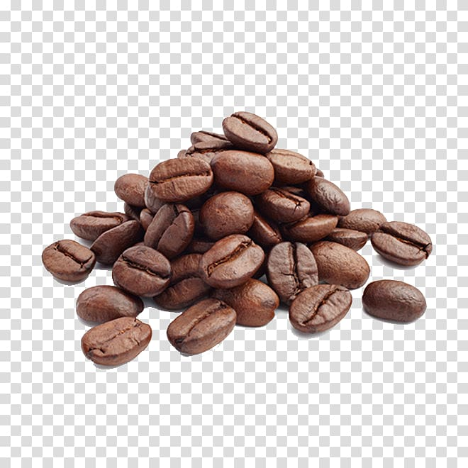 Coffee beans clipart transparent jpg freeuse download Arabica coffee Cafe Coffee bean Coffee roasting, Coffee ... jpg freeuse download