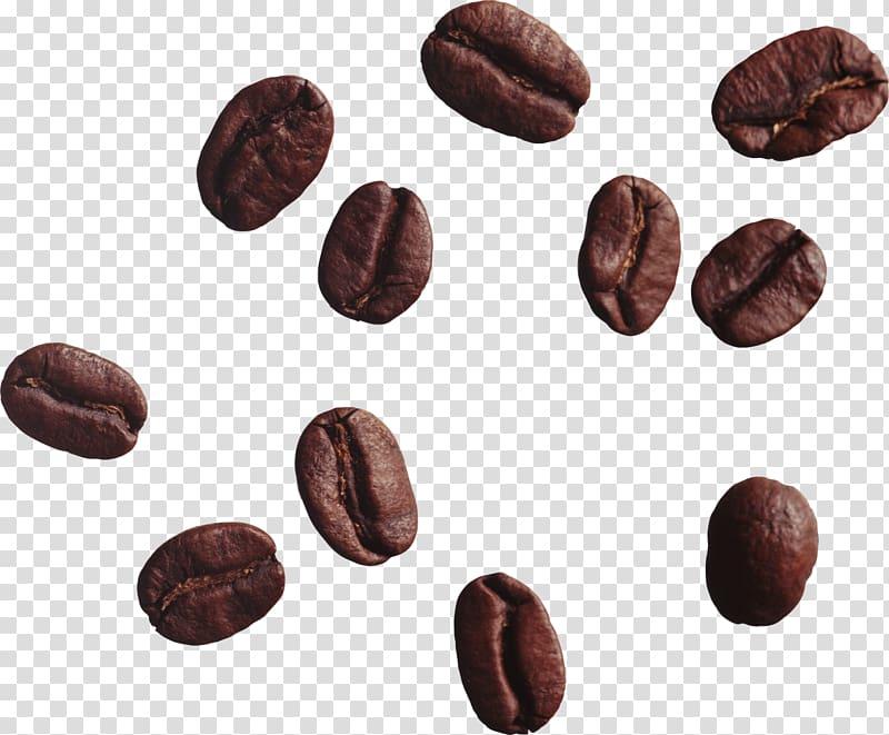 Coffee beans clipart transparent svg transparent stock Brown coffee beans, Coffee bean Tea Cappuccino, Coffee beans ... svg transparent stock