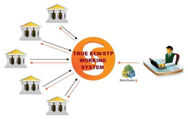 Coinexx clipart jpg free Trading Platforms jpg free