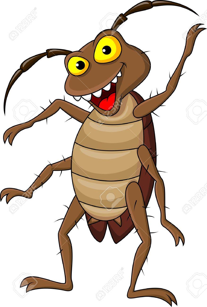 Cokeroach clipart free download 88+ Cockroach Clipart | ClipartLook free download