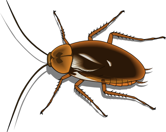 Cokeroach clipart freeuse library Cockroach Clip Art Free | Clipart Panda - Free Clipart Images freeuse library