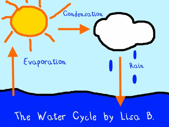 Collection water cycle clipart jpg stock Water cycle jar clipart - ClipartFest jpg stock