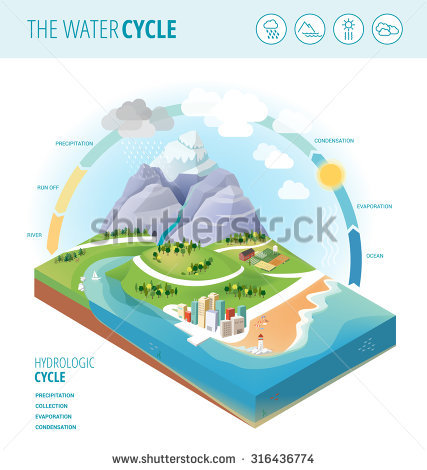 Collection water cycle clipart clipart freeuse stock Water Cycle Diagram Showing Precipitation Collection Stock Vector ... clipart freeuse stock