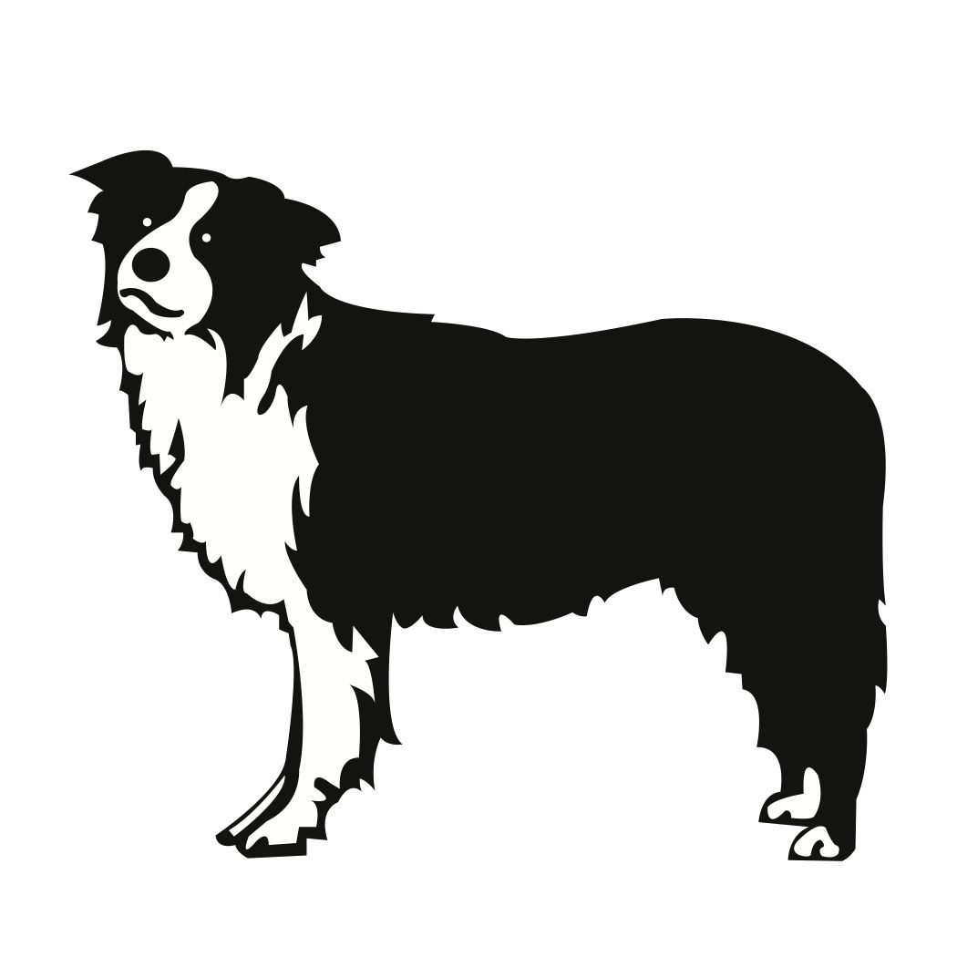 Collie clipart free clipart transparent library free svg files | Free SVG File Download – Border Collie Dog ... clipart transparent library