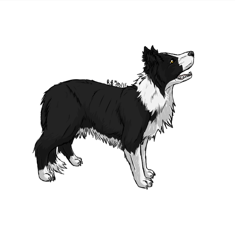 Scottie dog clipart border image royalty free Border Collie by StormFalconFire | Silhouette | Pinterest | Collie ... image royalty free