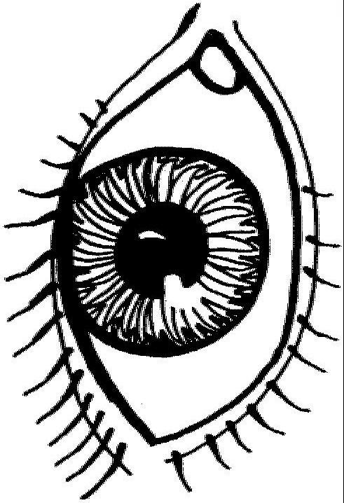 Color sheet clipart eyes image freeuse download Eye Coloring Sheet. eye coloring pages getcoloringpages com. eye ... image freeuse download