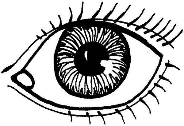 Color sheet clipart eyes. Coloring page pages kid