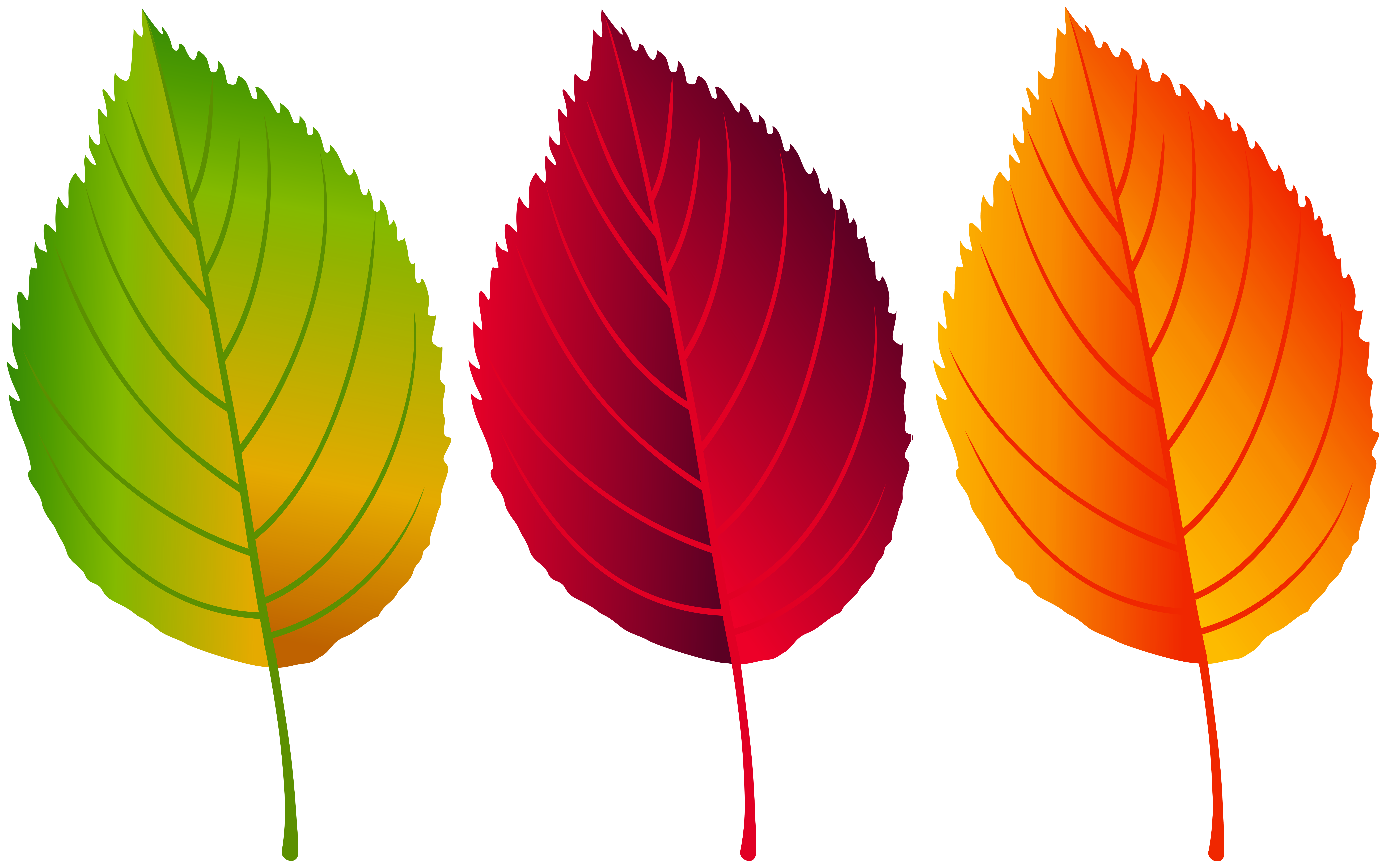Colorful fall leaves clipart png free stock Colorful Fall Leaves PNG Clip Art Image | Gallery Yopriceville ... png free stock