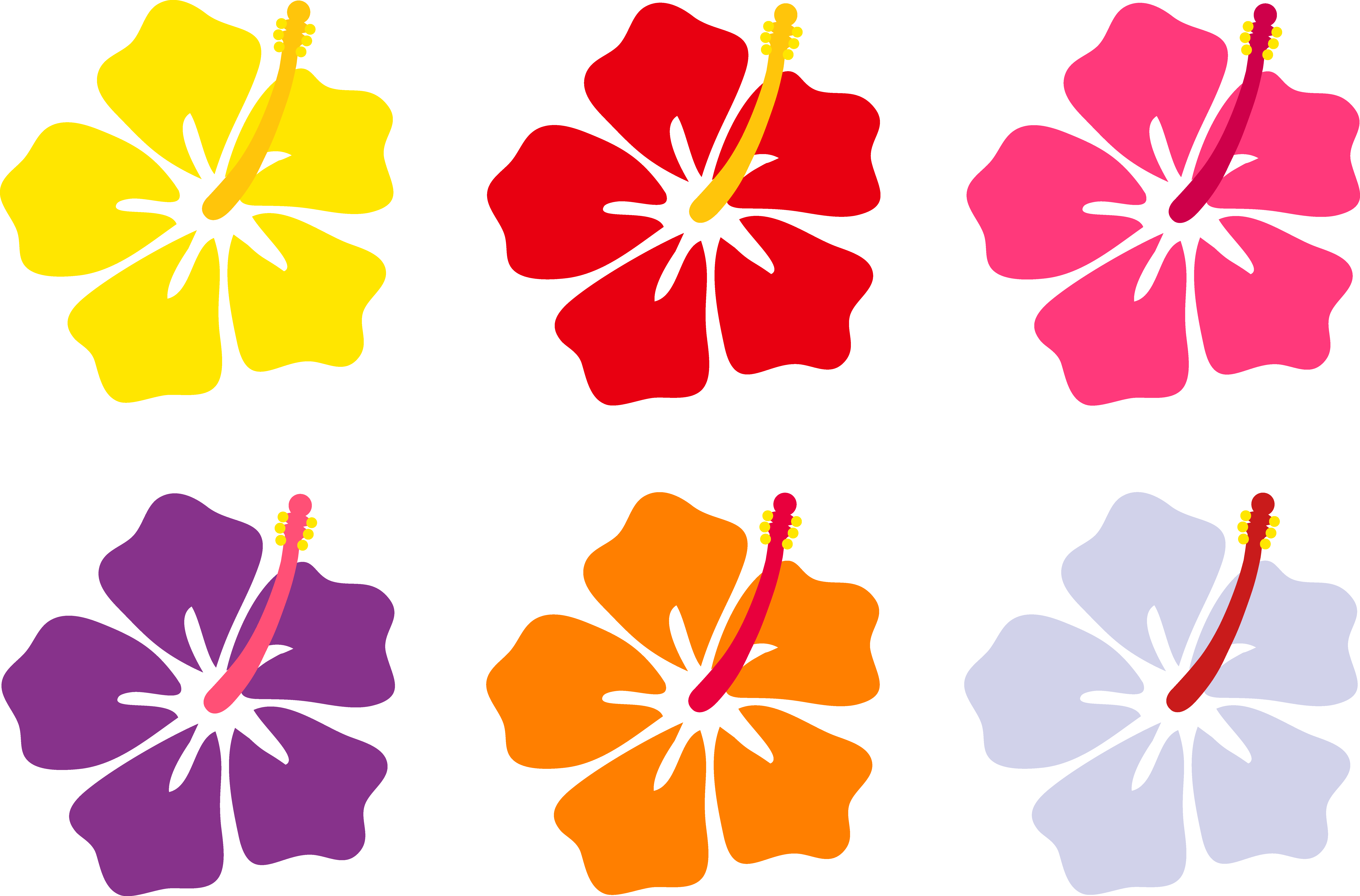 Flower colors clipart. Hibiscus flowers in six