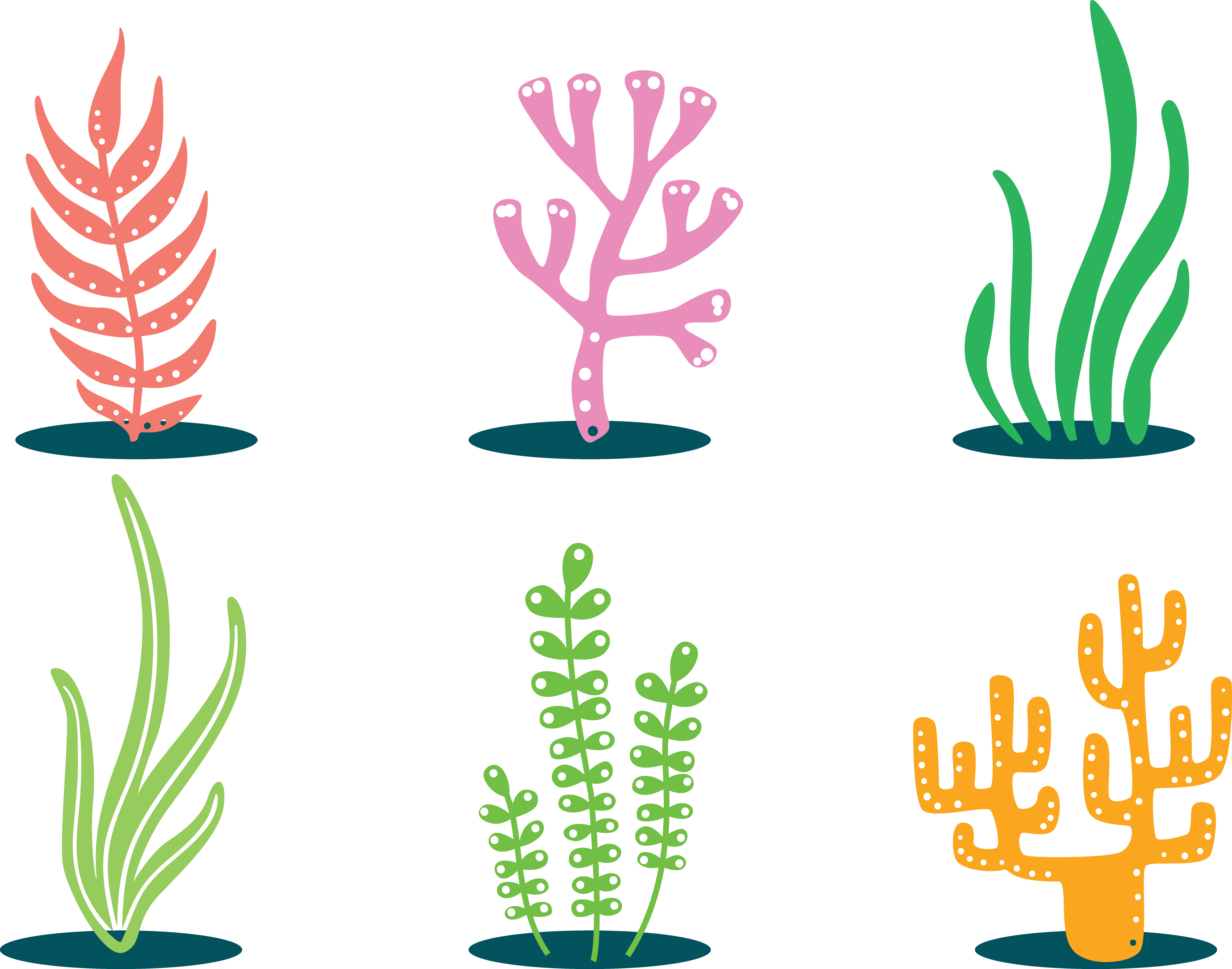 Colorful flower pot clipart picture free library Coral Clip art - Colorful plants 4564*3589 transprent Png Free ... picture free library
