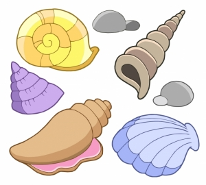 Colorful seashell clipart image freeuse stock 36+ Seashell Clipart | ClipartLook image freeuse stock