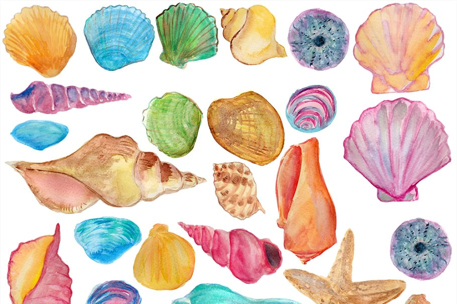 Colorful seashell clipart png free library Shells watercolor clip art png free library