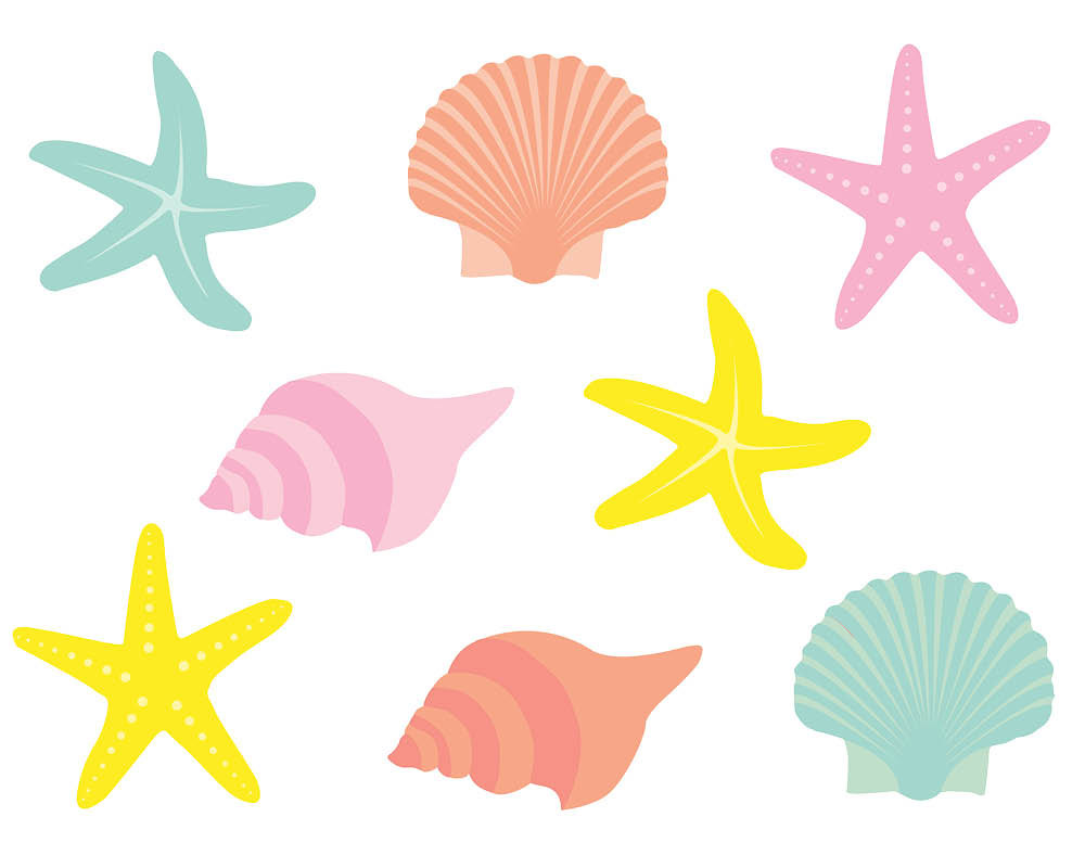 Colorful seashell clipart image freeuse download Colorful seashell clipart 10 » Clipart Station image freeuse download
