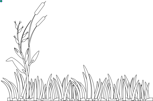 Coloring book grass in field clipart jpg royalty free stock animal food luna. grass and flowers free colouring pages. kids of ... jpg royalty free stock