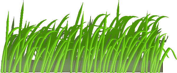Coloring book grass in field clipart clipart stock Grass clipart | Coloring Pages To Print clipart stock