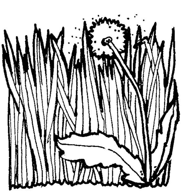 Page decimamas clipartfest. Coloring book grass in field clipart