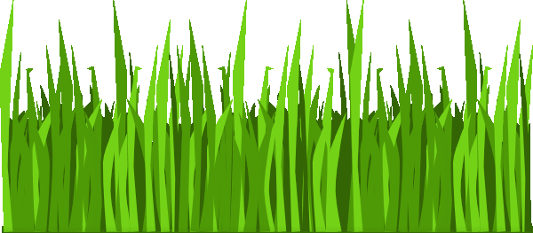 Coloring book grass in field clipart. Pages to print