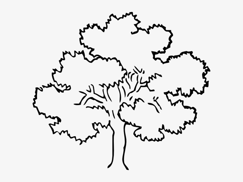 Coloring page of a oak tree clipart jpg freeuse stock Oak Tree Clip Art At Clker Com Vector Clip Art Online - Rainforest ... jpg freeuse stock
