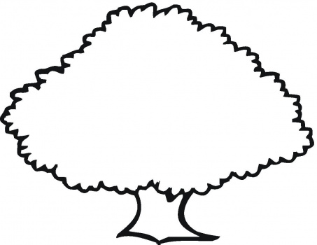 Coloring page of a oak tree clipart clip art freeuse download Oak Tree coloring page & book for kids. clip art freeuse download