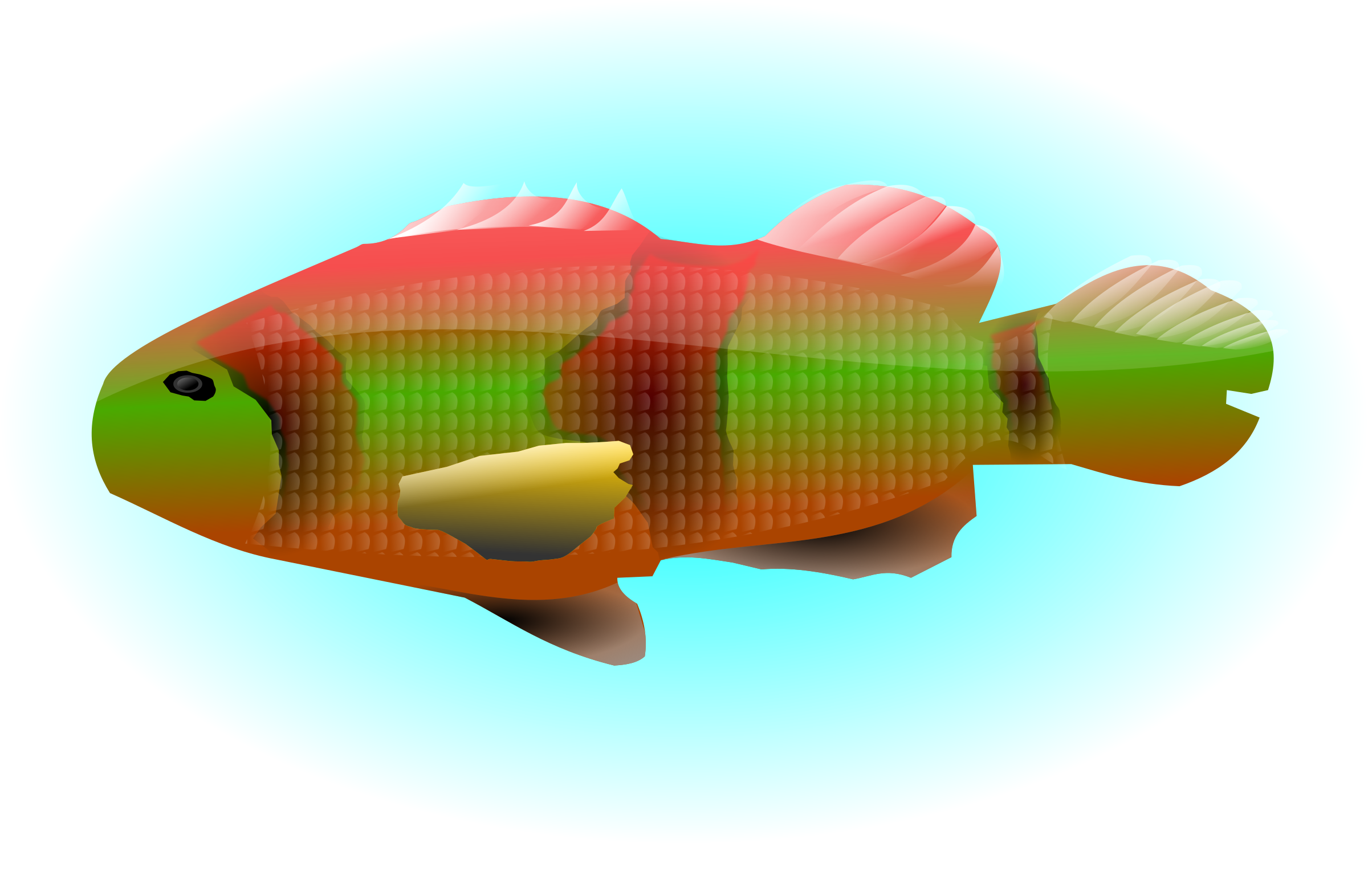 Lake fish clipart clip black and white library Clipart - colourful fish clip black and white library