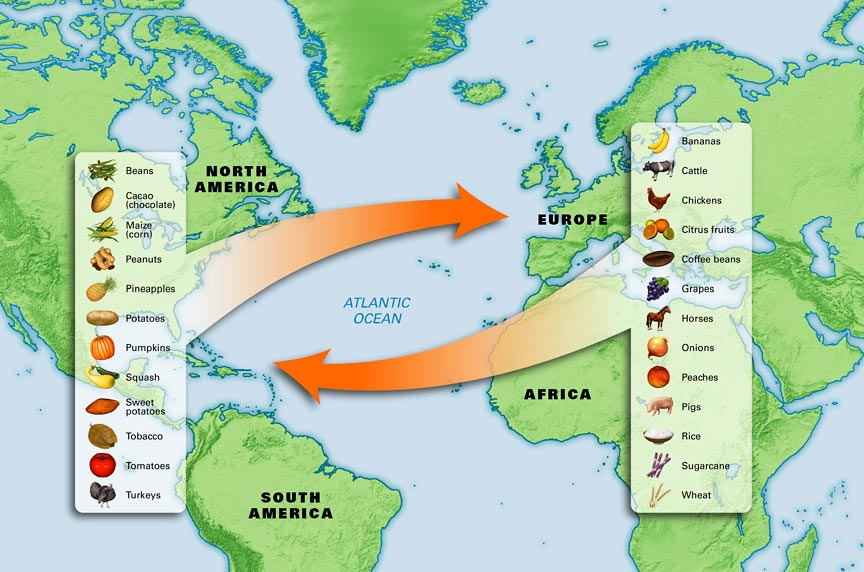 Columbian exchange clipart clipart freeuse library The Columbian Exchange – Ever Heard of it? | Booze Business: A Blog ... clipart freeuse library